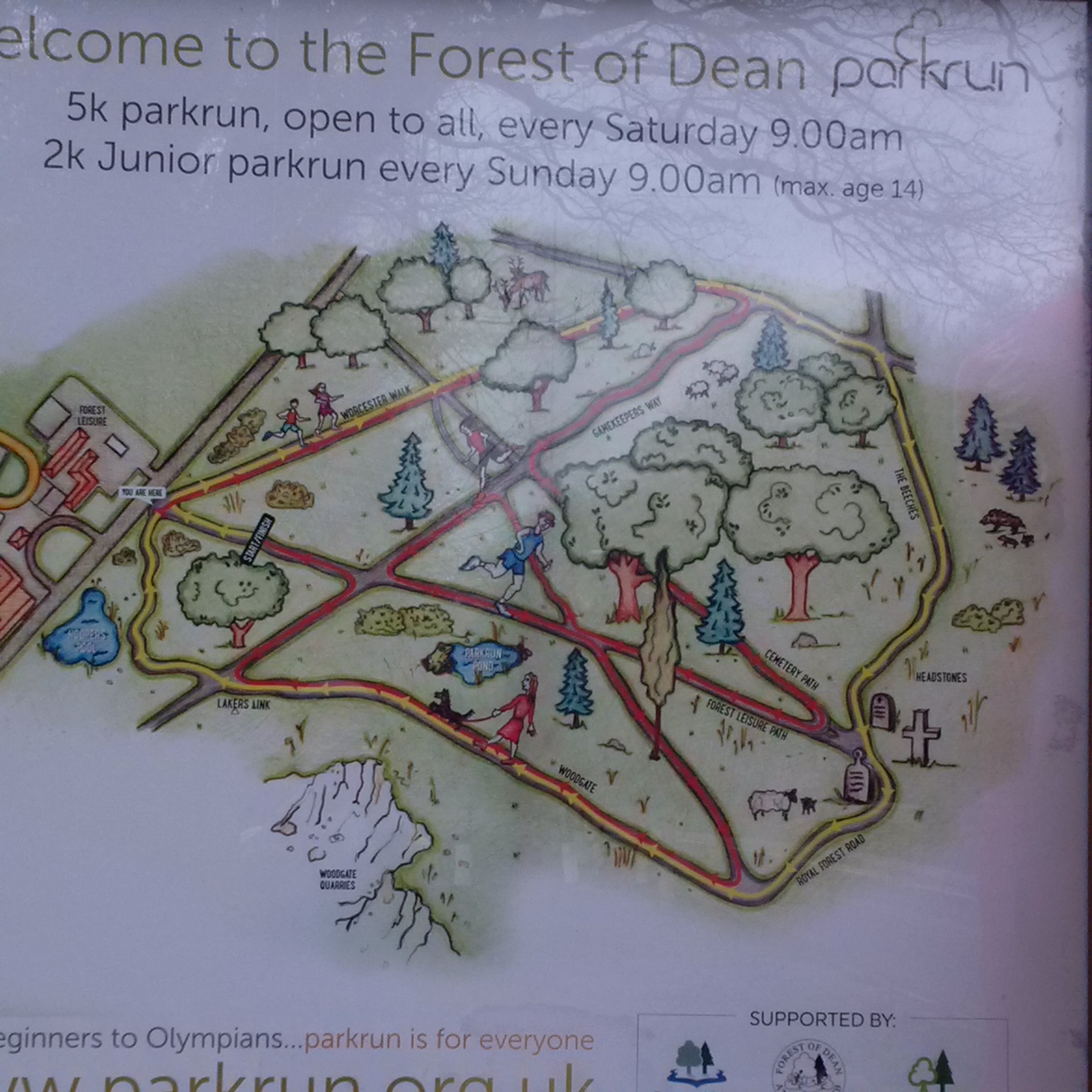 Fun Run Map for Forest of Dean District Council